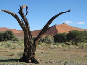 Namibia_Duene